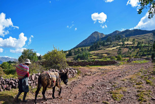 Excursions, ACUPARI Cusco